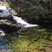 Pristine Stream Pool Poster