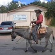 Prospector Re-enactor With Burro Passing Rose Bush Museum Sign Tombstone  Arizona 2004 Poster