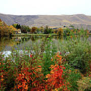 Prosser Autumn River With Hills Poster