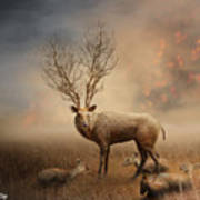 Deer Warm Tone Poster