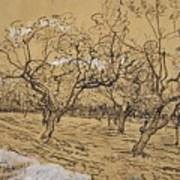 Provencal Orchard Arles  March - April 1888 Vincent Van Gogh 1853  1890 Poster