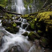 Proxy Falls Oregon 5 Poster