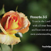Proverbs Three Five Poster