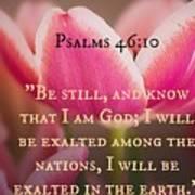 Psalms104 Poster