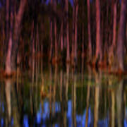 Psychedelic Swamp Trees Poster
