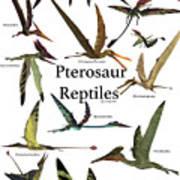 Pterosaur Reptiles Poster
