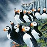 Puffin College Poster