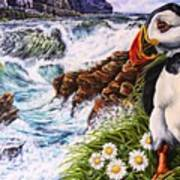 Puffin Peace Poster