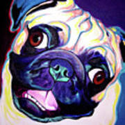 Pug - Rider Poster by Alicia VanNoy Call