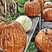 Pumkins In A Row Poster