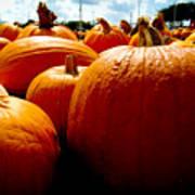 Pumpkin Patch Piles Poster
