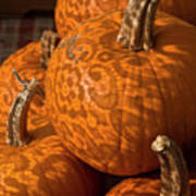 Pumpkins And Lace Shadows Poster