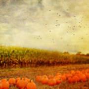 Pumpkins In The Corn Field Poster by Kathy Jennings