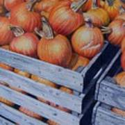 Pumpkins Two Poster