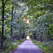Pumpkinvine Trail In Fall Poster