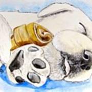 Puppy Dreams Poster