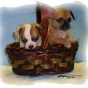 Pups In A Basket Poster