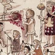 Purepecha People Poster