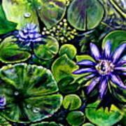 Purple Dawn Poster