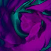 Purple Delight Poster
