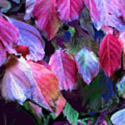 Purple Fall Leaves Poster