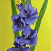 Purple Gladiolas Poster