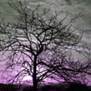 Purple Haze Across The Sky Poster