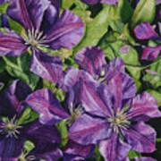 Purple Persuasion Poster