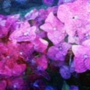 Purple Pink Painterliness Poster