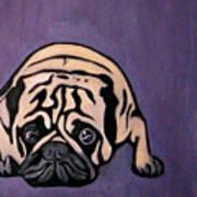 Purple Pug Poster