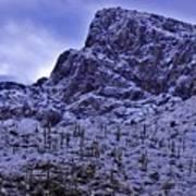Pusch Ridge Snowfall Poster