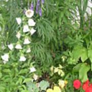 Quebec Garden 2 Poster
