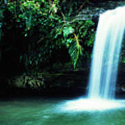 Quebrada Juan Diego Waterfall Mirror Image Poster