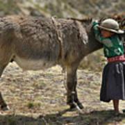 Quechua Girl Hugging His Donkey. Republic Of Bolivia. Poster