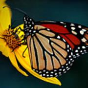 Queen Monarch 2 Poster