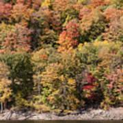 Quinnipiac River Color Poster