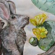 Rabbit With Flower Poster
