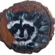 Raccoon Poster