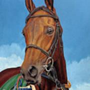 Radamez - Arabian Race Horse Poster