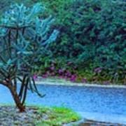 Rain Storm On Lake Linda Poster