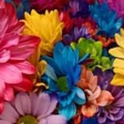 Rainbow Bouquet Poster