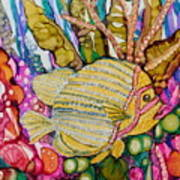 Rainbow-colored Sunfish Poster