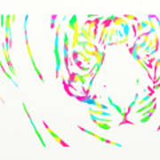 Rainbow Coloured Tiger Poster