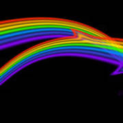 Rainbow Dolphin Poster