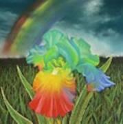 Rainbow Iris Poster