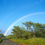 Rainbow Over Treetops Poster