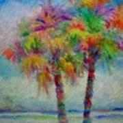 Rainbow Palm Scene Poster