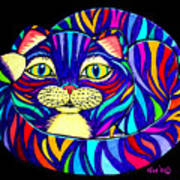 Rainbow Striped Cat 2 Poster