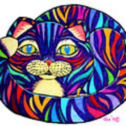 Rainbow Striped Cat Poster