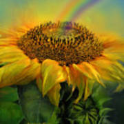 Rainbow Sunflower Poster